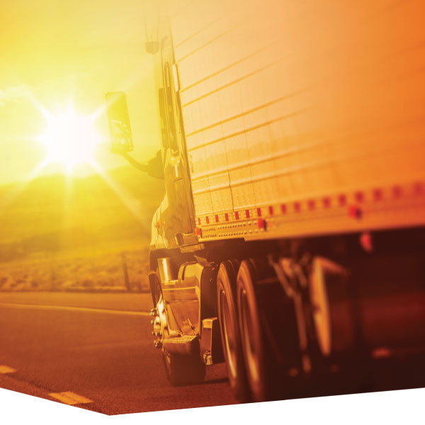 Cargo Carriers Liability